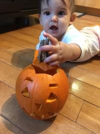 baby pumpkin